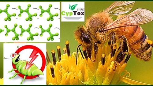 Εκλεκτικά εντομοκτόνα ασφαλή για μέλισσες